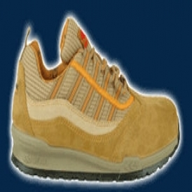 Safety shoes with anti-perforation sole
