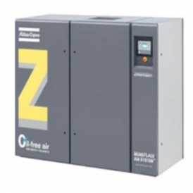 Variable speed screw compressor (stationary)
