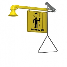 Wall mount safety shower